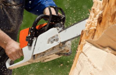 Dr. Stephen Drukker on Chainsaw Safety