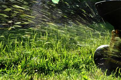Dr. Ronald Connor on Lawn Mower Safety